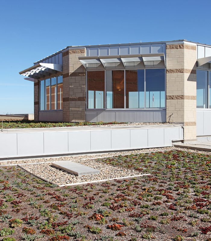 View of the Saddlebrook Joint-Use Facility Green Roof